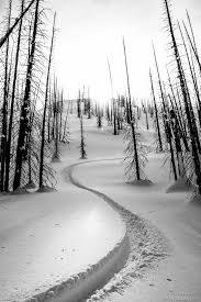 best 25 freeride ski ideas on winter sports ski