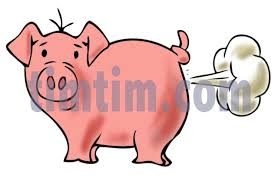 free drawing pig category farm animals