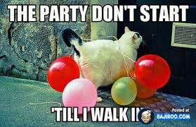 Balloon Memes - funny fun humor funny evening randoms pics images photos pictures cat with balloon jpg
