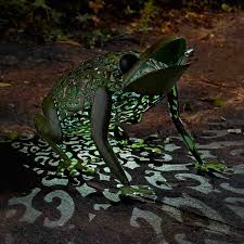 solar frog light smart garden solar frog light on sale fast delivery