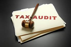 Irs Audit Red Flags How To Survive The Dreaded Irs Audit