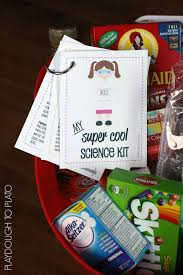 diy home science kit for kids playdough to plato