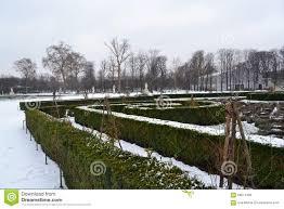 tuileries garden in winter stock photo image 58671499
