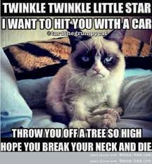 Funny Song Memes - grumpy cat s song