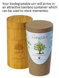 biodegradable urns living urn tree planting system for pets biodegradable cremation urn