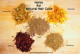 herbal hair color for healthy hair hippy hair