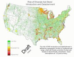 emerald ash borer map headline emerald ash borer