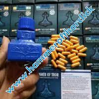 jual obat kuat pria agen hammer of thor asli harga murah obat kuat