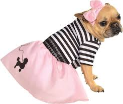 Cute Small Dog Halloween Costumes 286 Dogs Dressed Images Dog Dresses