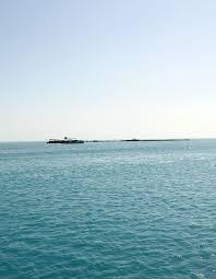 iguana island iguana island excursion providenciales turks u0026 caicos