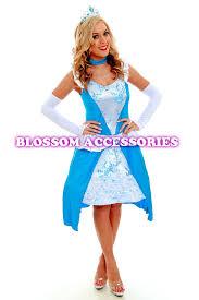 Halloween Costume Cinderella G19 Ladies Princess Cinderella Fancy Dress Party Fairytale