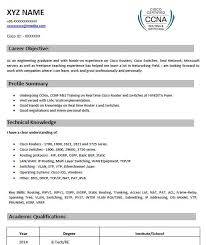 Ccna Resume Sample by 5 Perfect Ccna Resume Samples That You Should Use