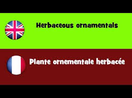 from to herbaceous ornamentals