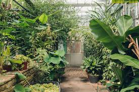 Fit Botanical Gardens Bristol Botanic Garden Glasshouses Haarkon Lifestyle And