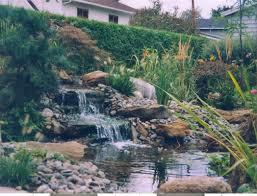 idee de jardin moderne bassin d eau jardin