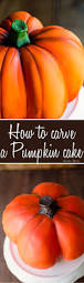 carve a realistic pumpkin cake ashlee marie