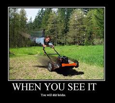 Lawn Mower Meme - image 773 when you see it know your meme