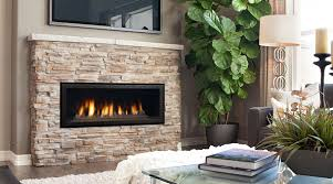 Contemporary Gas Fireplace Insert by Gas Stoves U0026 Inserts Ma Ri Pellets
