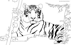tiger coloring pages to print cool free tiger coloring sheet to