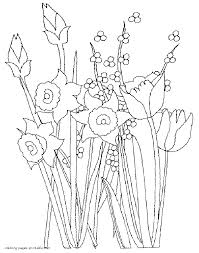 spring flowers coloring pages daffodils tulips and mimosas