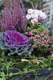 herbstbepflanzung balkon herbstbepflanzung für töpfe und kübel gardens planters and