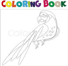 coloring pages birds little cute parrot sits on the tree branch