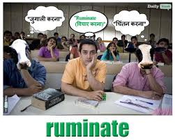 Meme In English - 3 idiots memes dailyvocab english hindi meaning pictures