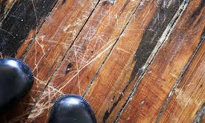 diy aid for damaged hardwood floors care2 healthy living