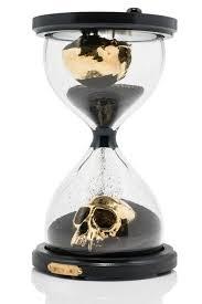 Skull Viewer 195 Best Day Of The Dead Images On Pinterest Sugar Skulls Skull