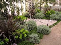 sukkulenten im garten u2013 tropische pflanzen bringen einen hauch exotik
