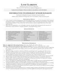 Best Resume It by Best It Program Manager Resume For Information Technology Senior