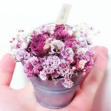 plats cuisin駸 en bocaux les 123 meilleures images du tableau potted flower sur