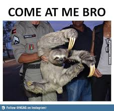 Sloth Meme Images - the sloth meme thread off topic comic vine