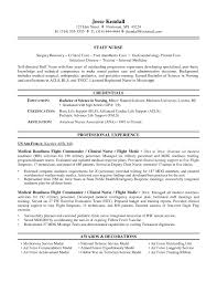 resume examples for nurses air force 4no resume example