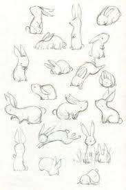 how to draw a cat u2026 pinteres u2026