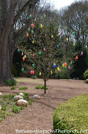 easter egg tree decorate outdoors for easter