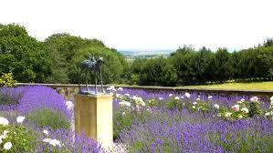 garden design brighton tunbridge wells eastbourne sussex kent main original jpg