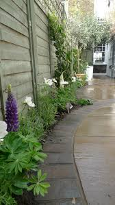 Curved Garden Wall by 38 Best Side Return Images On Pinterest Landscaping Garden