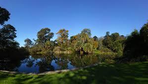 Melb Botanical Gardens by Royal Botanic Gardens Melbourne Botanic Garden In Melbourne
