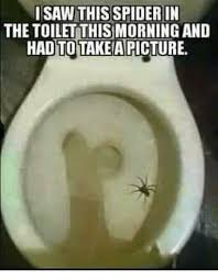 Spider Meme Misunderstood Spider Meme - i saw this spider in the toilet thismorning and hadtotakeapicture