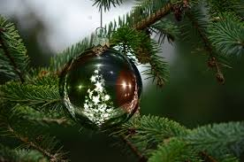 new christmas tree card available now dorset and somerset air