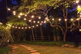 g40 string lights buy outdoor patio g40 globe string lights fancy string lights for