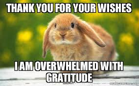 Gratitude Meme - thank you for your wishes i am overwhelmed with gratitude thank