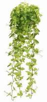 Hanging Plant Artificial Flowers U0026 Christmas Decorations Aero U0026 Aeroflora