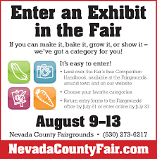 anyone in nevada county looking to build an affordable cabin sized entering an exhibit in the fair don t miss the paperwork deadline