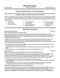 C Level Executive Resume Samples by Account Executive Resume Sales Account Executive Resume Example