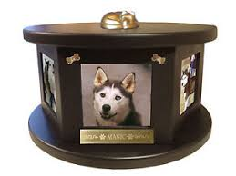 pet urn decorative engraved rotating photo pet urn dog cat ebay
