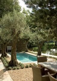 garden pool garden design with swimming pool fresh design pedia