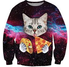 best sweater the ten best worst cat sweaters from around the