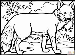gremlins coloring pages red tailed hawk coloring page coloring home